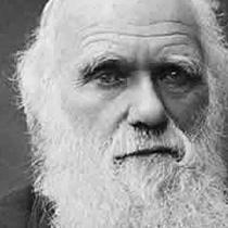 Charles Darwin. Uma biografia em dois volumes