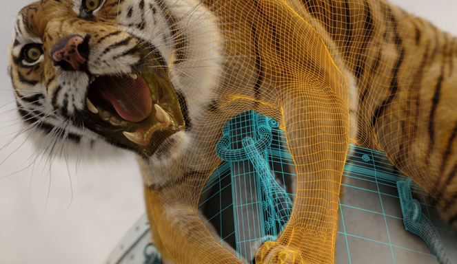 Mapeamento dos movimentos de Richard Parker