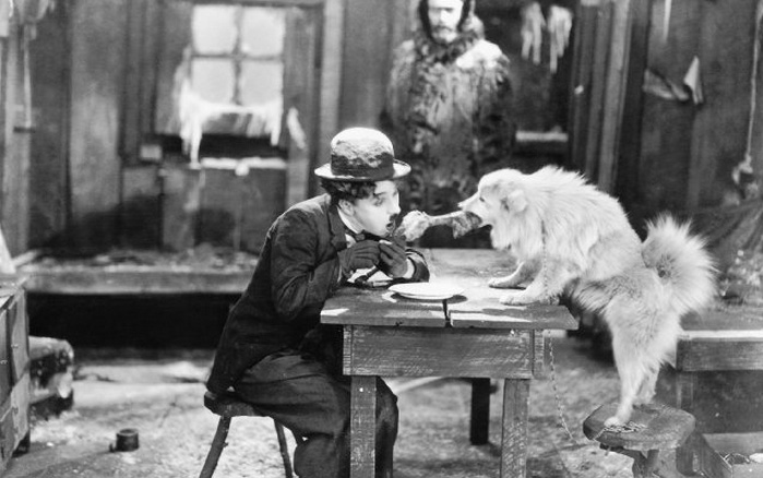 gold-rush-chaplin-dog