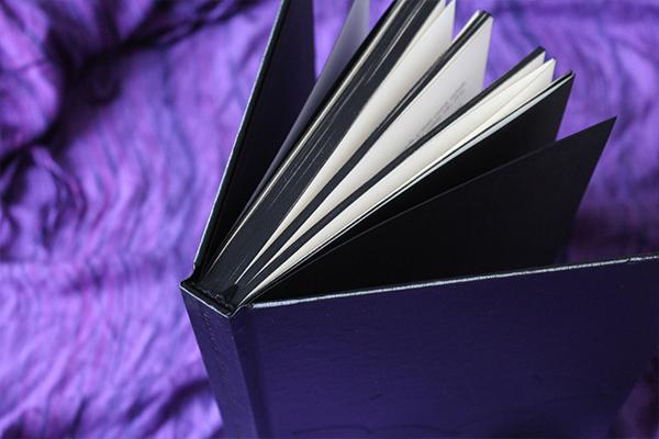 livro batman darkside, batman arkham knight livro, pipoca musical, blog literário