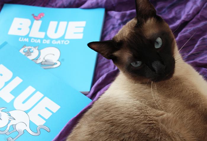 Blue e os Gatos, de Paulo Kielwagen (Pipoca Musical)